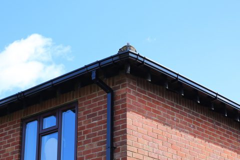 Wombwell <b>Gutter Replacement</b>